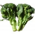 Broccoli /buc