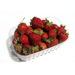 Căpșuni/kg