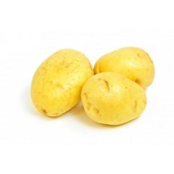Fehér krumpli/ kg