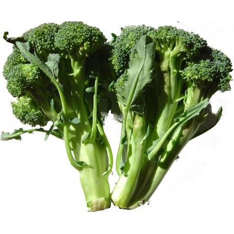 Broccoli /kg